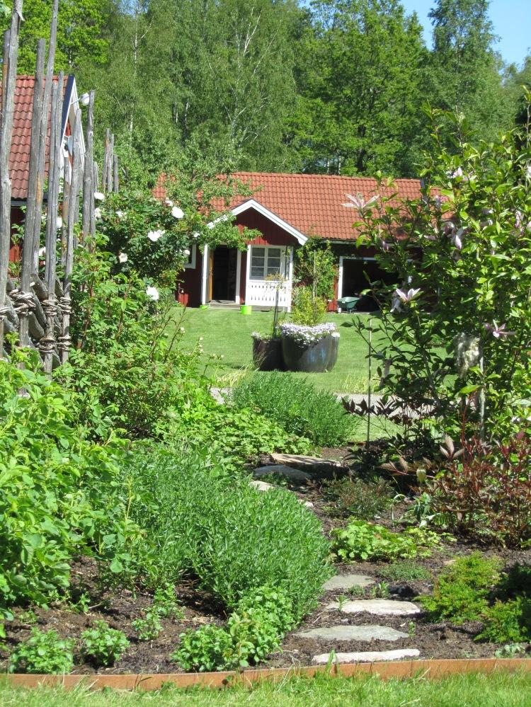 Trädgård 2015 099